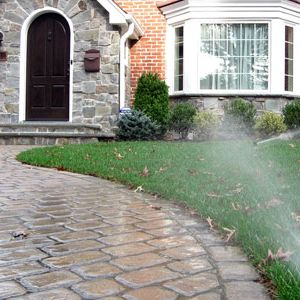 Some Useful Tips to Choose the Best Sprinklers for the Irrigation of Your Garden - Home - Landscaping